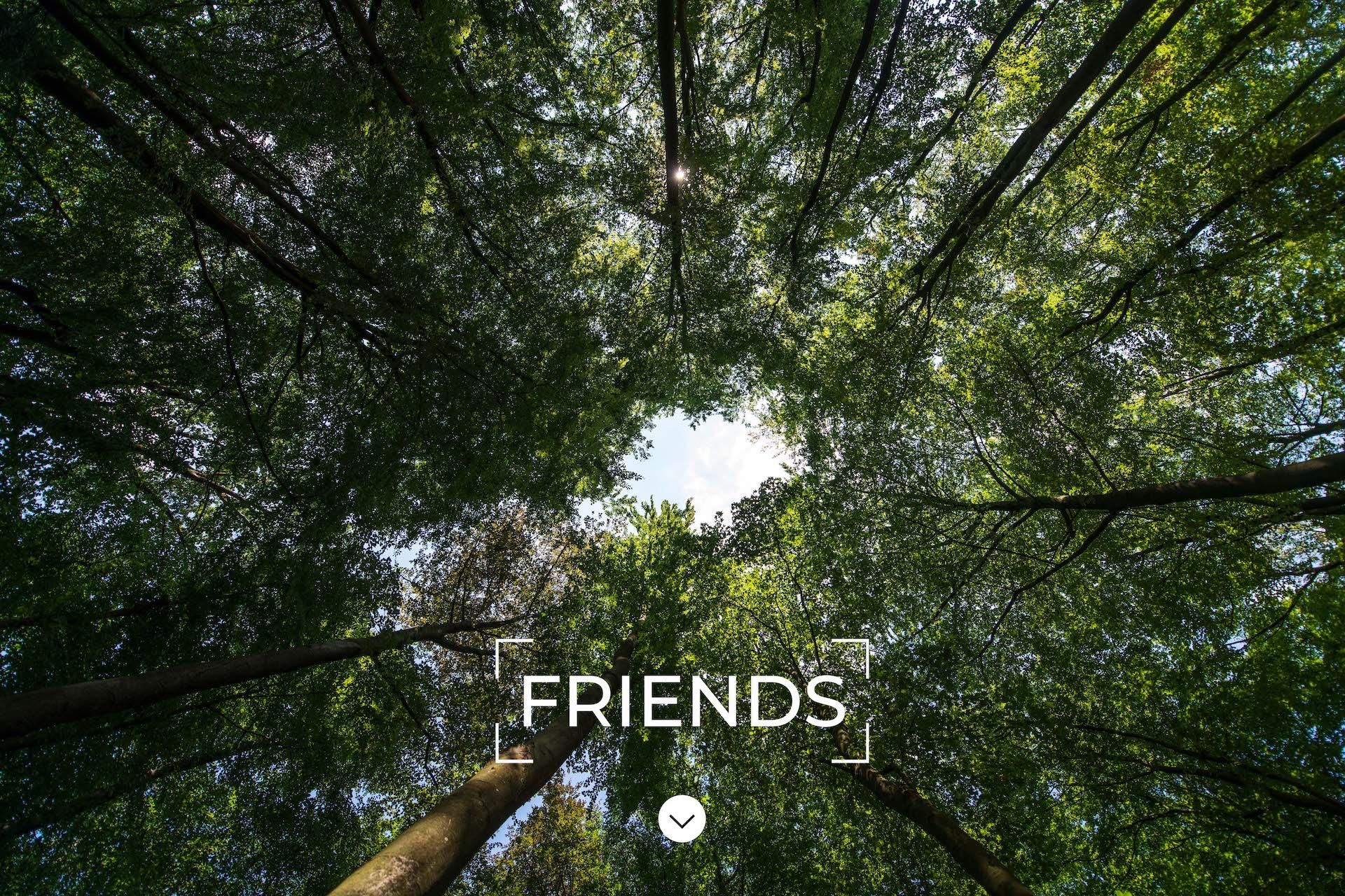 greenmoon-friends