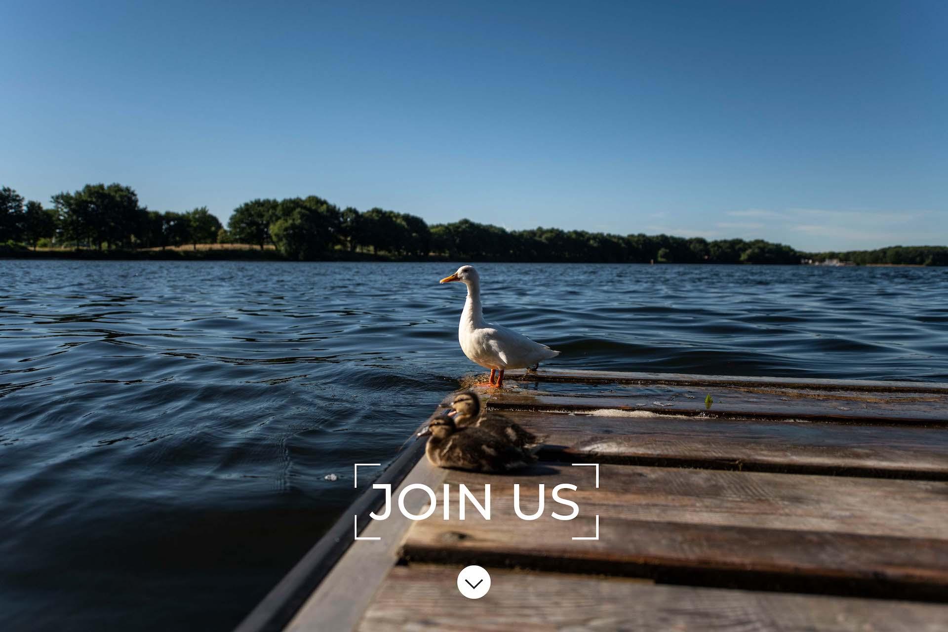 greenmoon-join-us